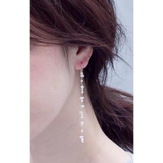 ete - 新入荷✳︎淡水真珠(極小粒)+14kgf ロングピアス
