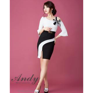 Andy - Andy ナイトドレス