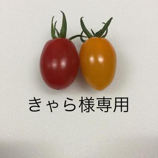 きゃら様専用 アイコ、オレンジアイコ4kg(野菜)