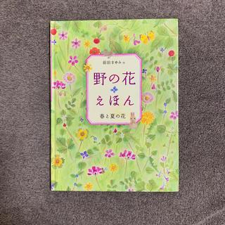 野の花えほん春と夏の花