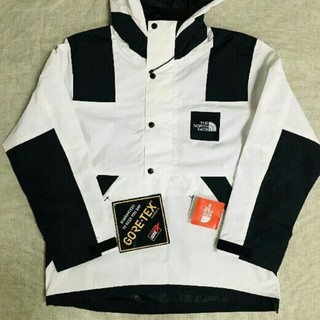 THE NORTH FACE - 人気品 TNF MOUNTAINノースフェイス JACKET