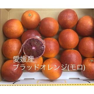 愛媛産ブラッドオレンジ(モロ)(フルーツ)