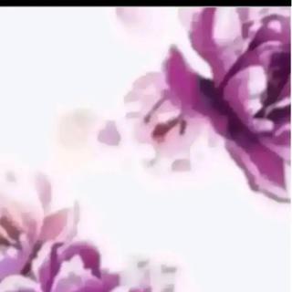 デイライルノアール(Delyle NOIR)のmii様専用(ロングワンピース/マキシワンピース)