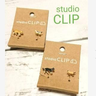 スタディオクリップ(STUDIO CLIP)のスタジオクリップ 可愛い猫ちゃんイヤリング(イヤリング)