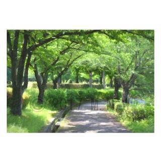 『葉桜の遊歩道』 厚塗り絵画風 CG画 A4サイズ(アート/写真)