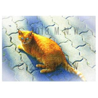 猫 (ネコ) 2 色鉛筆画風 CG画 A4サイズ(アート/写真)