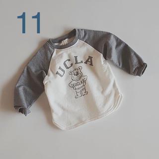 UCLA くまトレーナー 11