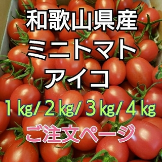 和歌山県産 ミニトマト アイコ  ご注文ページ(野菜)