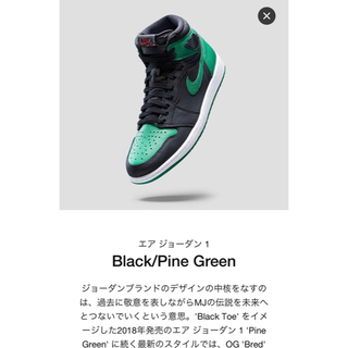 NIKE - Air Jordan 1 black/pine green