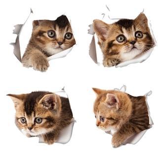 可愛い ネコちゃん 4枚セット ウォール ステッカー(その他)