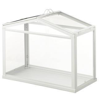 イケア(IKEA)の新品IKEA socker ミニ温室 観葉植物 多肉植物 (プランター)