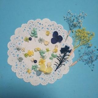 ハーバリウムボールペン&レジン向け小さめ花材セット ブルー&イエロー(ドライフラワー)