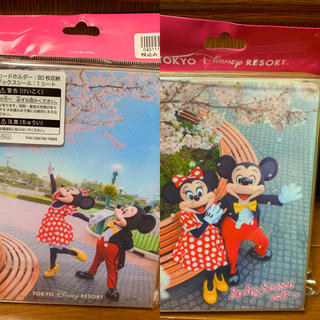 Disney - TDR⭐️桜シリーズ❤️実写ミキミニ❤️ポストカードホルダー❣️ディズニー⭐️