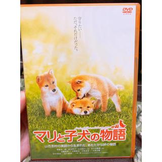 DVD マリと子犬の物語(日本映画)