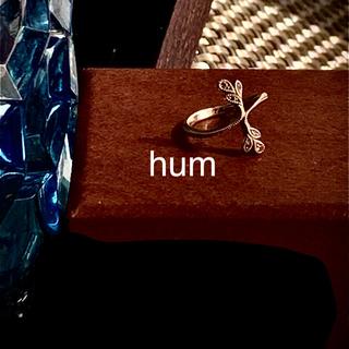 hum  k18 WG ブラウンダイヤ 月桂樹 #2.5(リング(指輪))