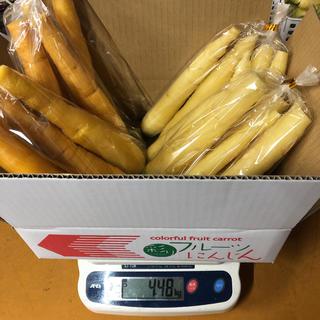彩りフルーツにんじん訳ありB品イエロー、ホワイト、4kg。無農薬野菜(野菜)