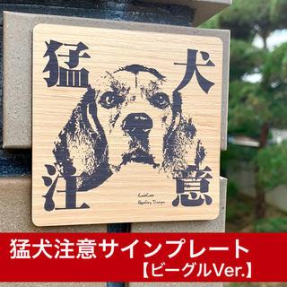 猛犬注意サインプレート(ビーグル)木目調アクリルプレート(店舗用品)