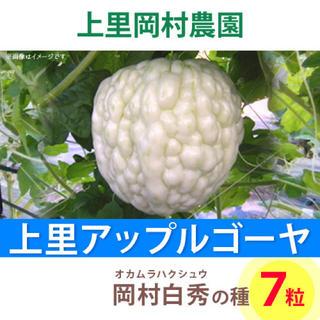 ★【HS7】上里岡村農園寅さんのアップルゴーヤ白秀の種(野菜)