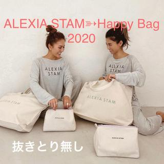 アリシアスタン(ALEXIA STAM)のアリシアスタン Happy Bag 2020 - S/M 抜きとり無し(その他)
