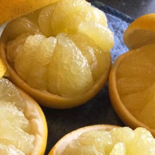 【訳あり品】[9kg]香り豊でさっぱり天草の文旦・パール柑 熊本産(フルーツ)