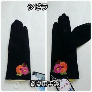 シビラ(Sybilla)の手袋春夏用(手袋)