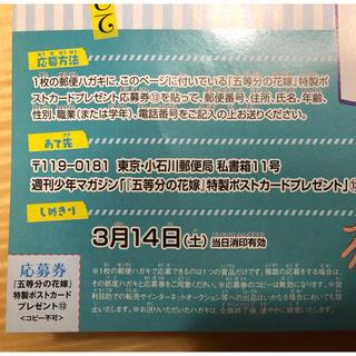 コウダンシャ(講談社)の五等分の花嫁 13号応募券(少年漫画)