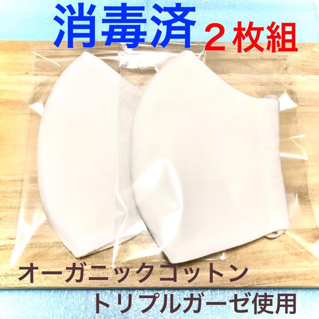 不織布マスク 濡れマスク - 手作り立体マスク 白 2枚組 ハンドメイドの通販