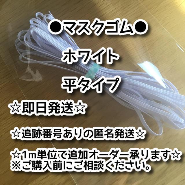 白ゴム 平タイプ 白 長さ:10m 幅:約0.3cmの通販