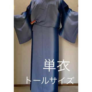 単衣 トールサイズ 美品 着物 ブルーぼかし 裄70   落款と為書きあり 正絹(着物)