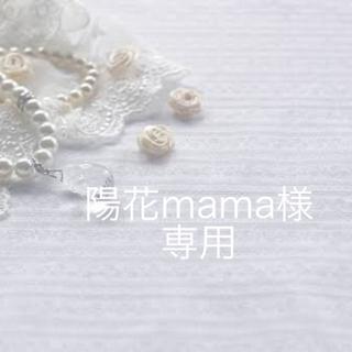 陽花mamaさま専用(ドライフラワー)