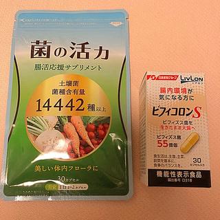 ニッシンセイフン(日清製粉)のビフィコロン S   30カプセル➕ 菌の活力 30カプセル(その他)