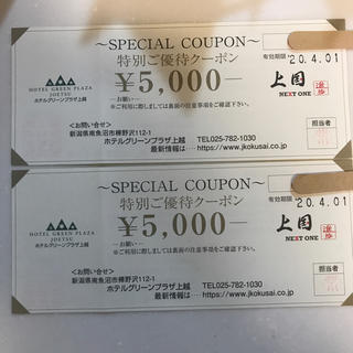 ホテルグリーンプラザ上越 特別優待クーポン券(宿泊券)