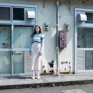マメ(mame)の美品!mame Nostalgic Pattern Knit Dress (ロングワンピース/マキシワンピース)