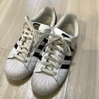 アディダス(adidas)のadidas  originals スーパースター(スニーカー)