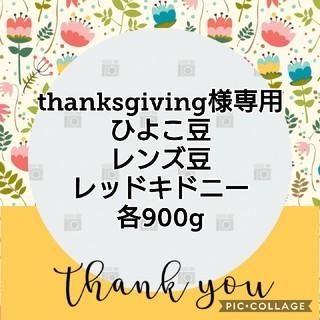 thanksgiving様専     ひよこ豆、レンズ豆、レッドキドニー(米/穀物)