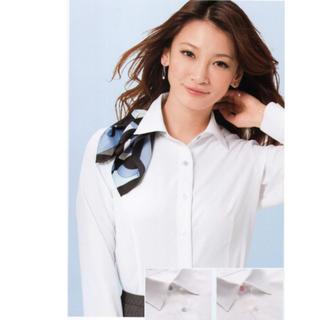 エンジョイ(enjoi)のカーシーカシマ【enjoy】シャツブラウス 2枚 EWB-484(シャツ/ブラウス(半袖/袖なし))