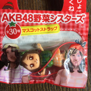 エーケービーフォーティーエイト(AKB48)のAKB48野菜シスターズ 柏木由紀 かぼちゃ(アイドルグッズ)