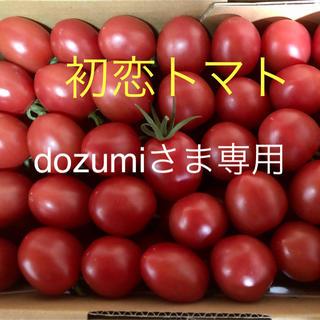初恋トマト箱込2キロ【dozumi様専用】(野菜)