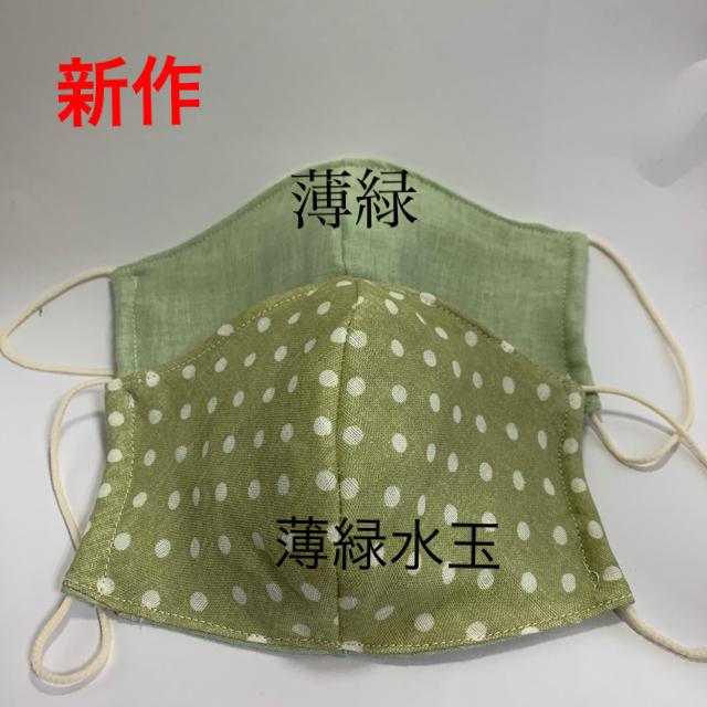 新作 手作りフィルターシート付タイプマスク 薄緑セットの通販