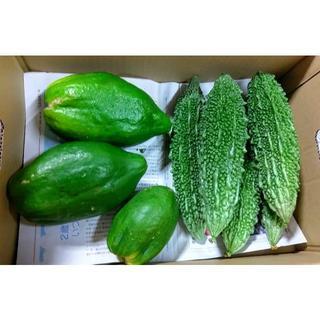 沖縄の健康・美容食材 今帰仁村産グリーンパパイヤとゴーヤーセット(野菜)