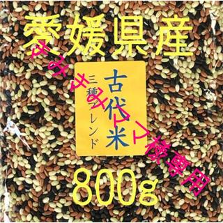 きみきみママ様専用  古代米3種ブレンド・黑米 愛媛県産 各800g(米/穀物)