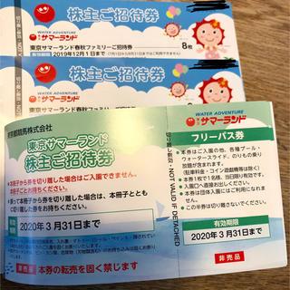 サマーランド 株主優待券 6枚(プール)