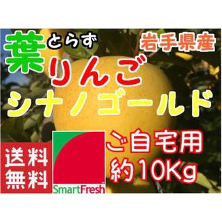 【送料込】スマートフレッシュ 葉取らずりんごシナノゴールド約10Kg【農家直送】(フルーツ)