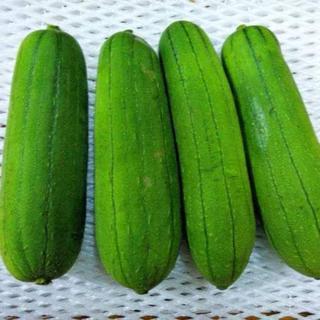 トロけて美味しい!沖縄産 島野菜ナーベラー 食用ヘチマ(野菜)