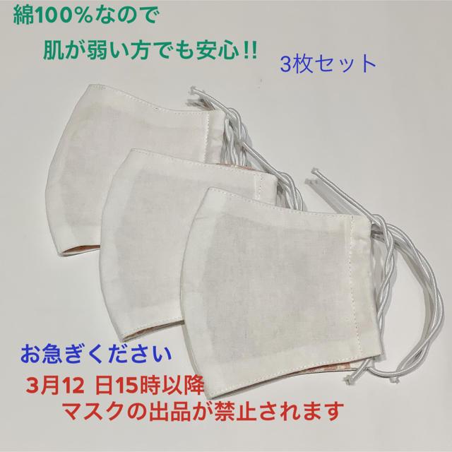 #263 マスク 大人用 3枚セット ハンドメイドの通販