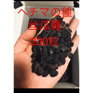 ヘチマの種200粒(野菜)