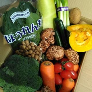 旬の美味しい九州産✨70〜80サイズ春野菜8種類を箱いっぱい詰め合わせセット(野菜)