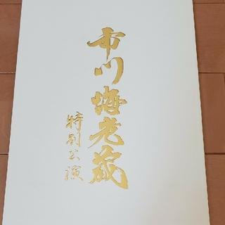 市川海老蔵特別公演パンフレット(伝統芸能)