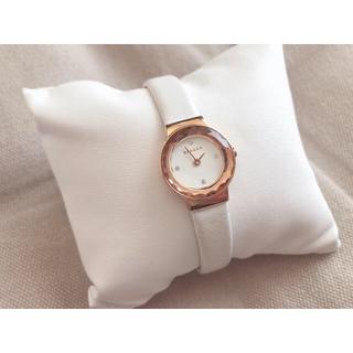 SKAGEN - SKAGEN腕時計