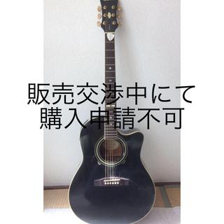 エピフォン(Epiphone)のアコースティックギター エピフォン(アコースティックギター)